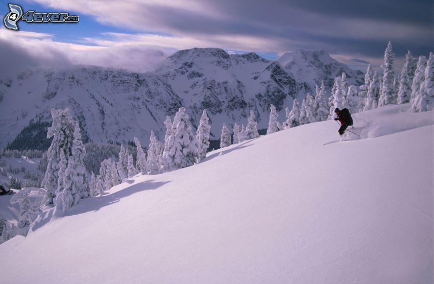 skidåkning, snöigt landskap