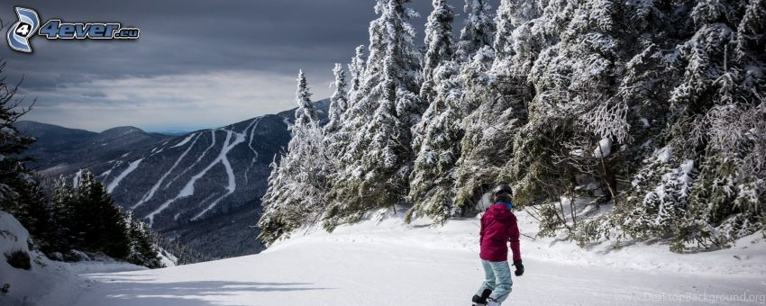 snowboarding, backe, snöig skog, snöig bergskedja