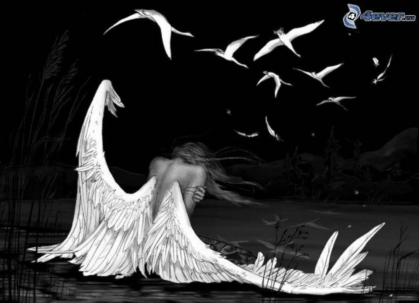 ängel, fåglar, vingar, svart och vitt