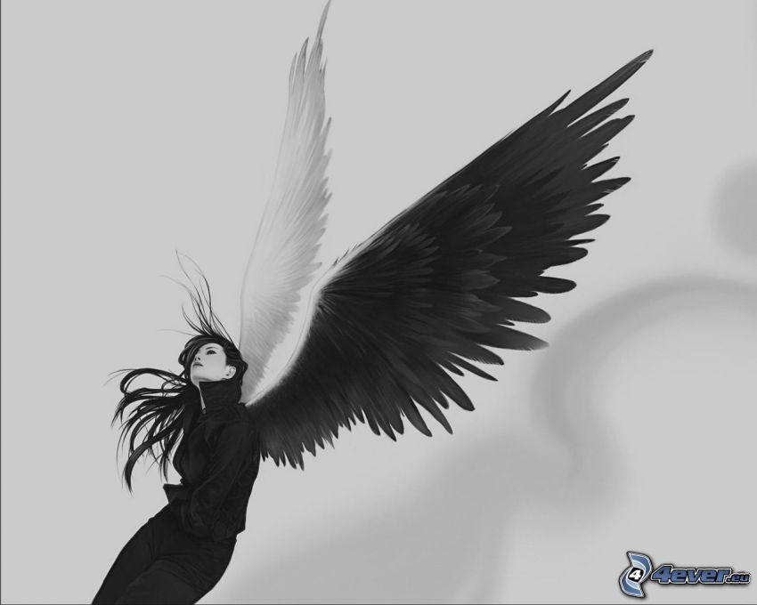 ängel, svart och vitt