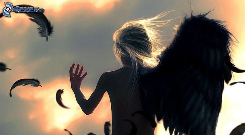 ängel, svarta vingar, fjädrar
