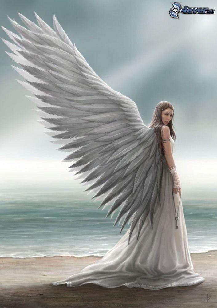 ängel, vingar, hav