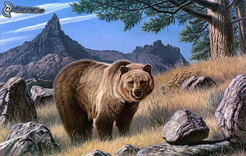 björn, teckning, stenbumlingar, klippigt berg