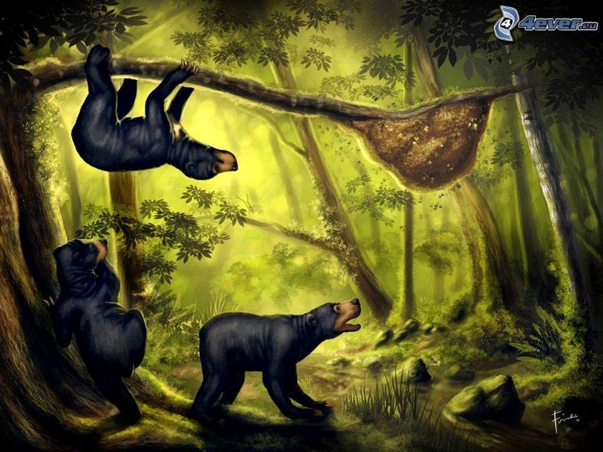 björnar, bikupa, gren, skog