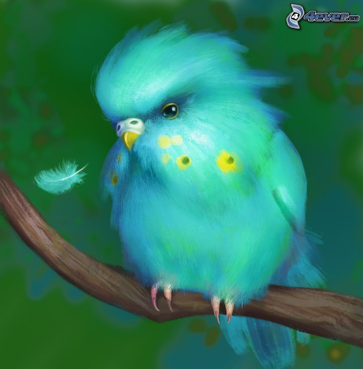 blå fågel, kvist