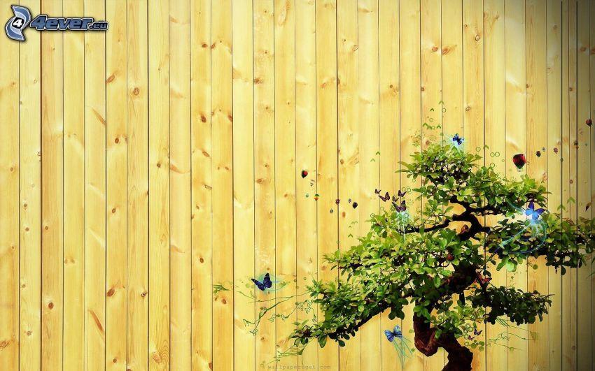 bonsai, träd, trästaket