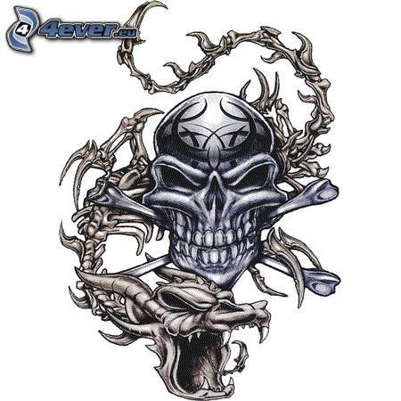 dödskalle, drake, skelett