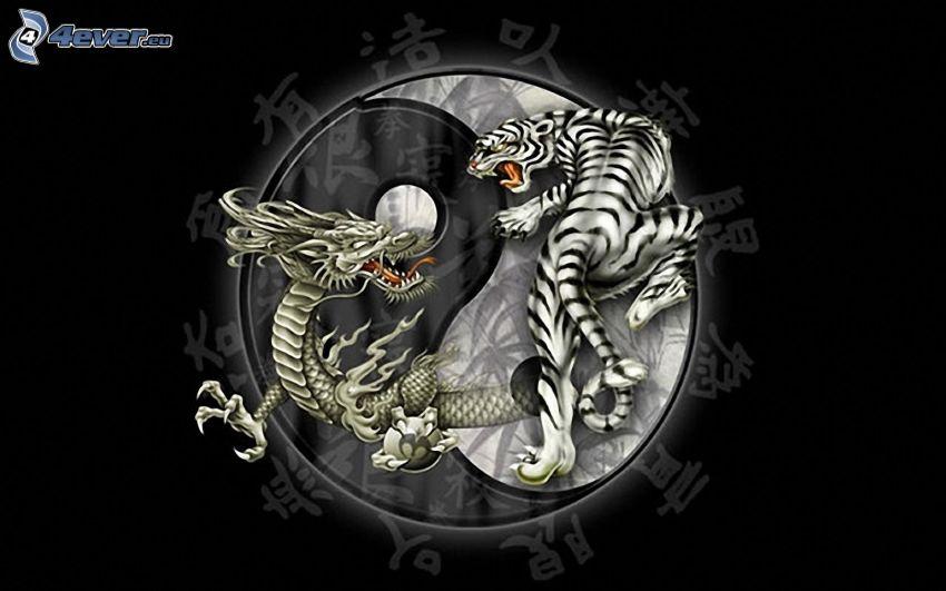 drake och tiger, balans, yin yang, konst