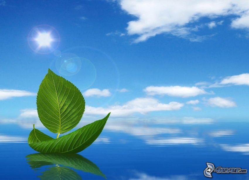 båt på havet, gröna blad, sol, blå himmel, moln