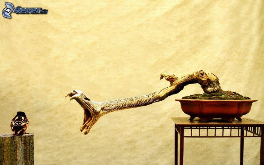 bonsai, orm, fågel