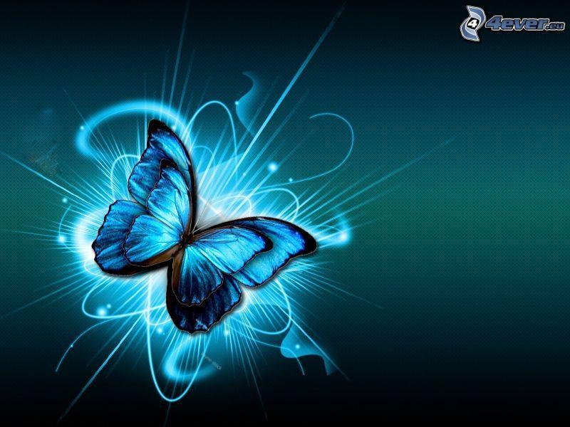 digital fjäril, linjer