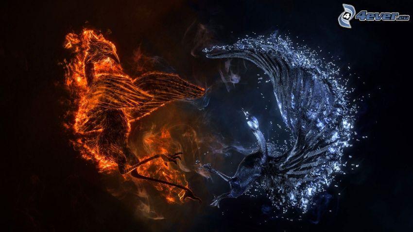 eld och vatten, fågel, svan