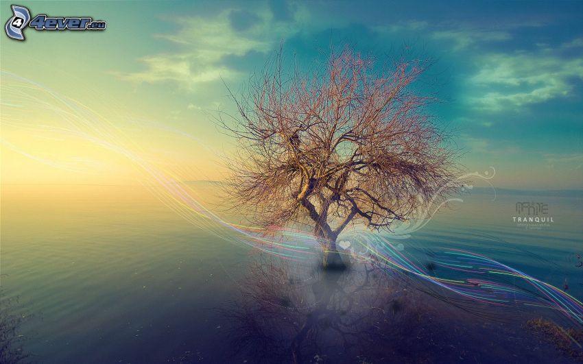 ensamt träd, abstrakt