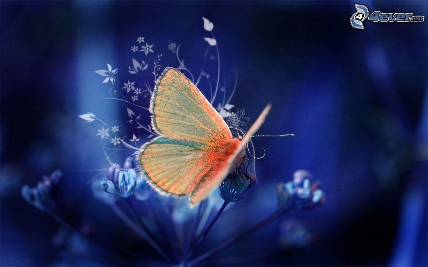 fjäril, abstrakta blommor
