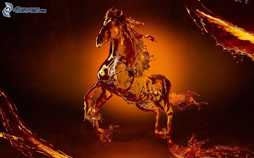 häst, vätska