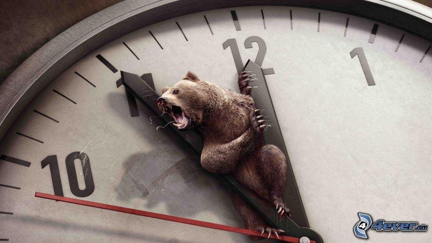 klocka, björn, ryt