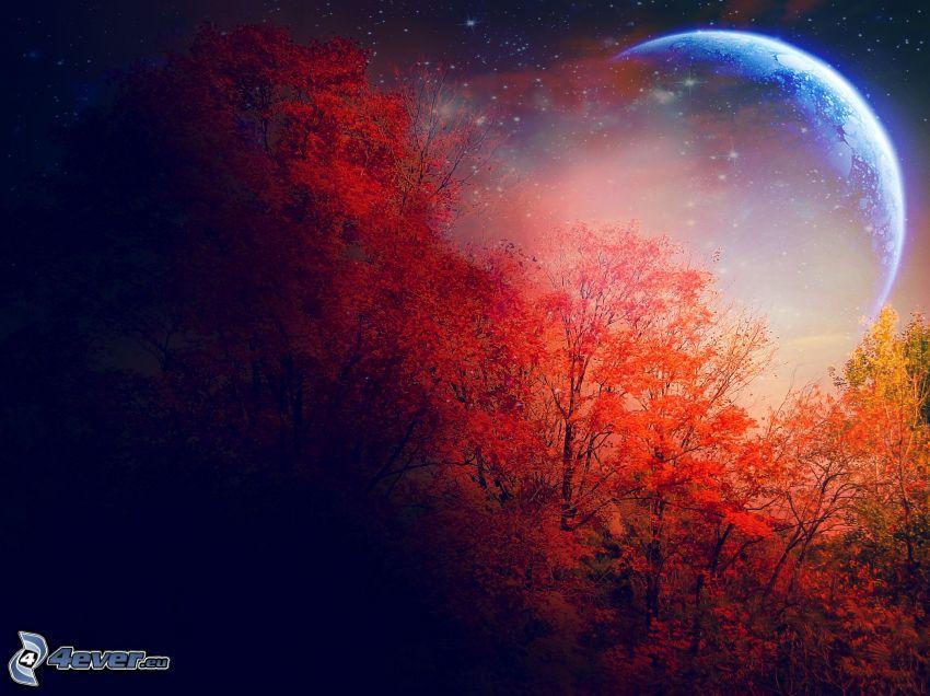 måne, färggrann höstskog