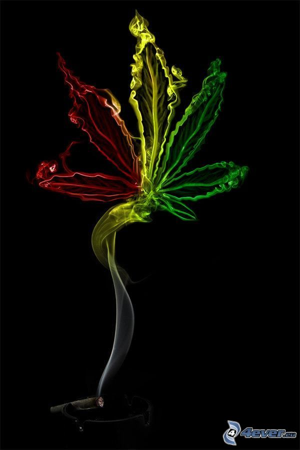 marijuana, cigarr, rök