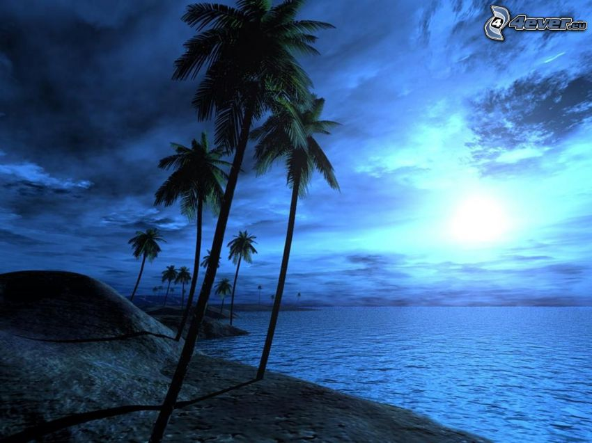 mörkt landskap, palmer vid havet, soluppgång