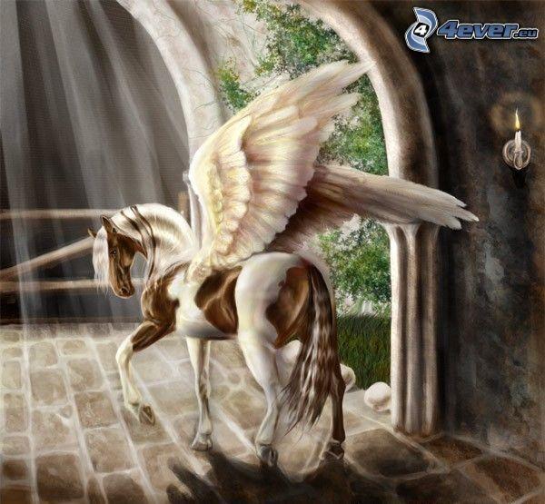 Pegasus, häst