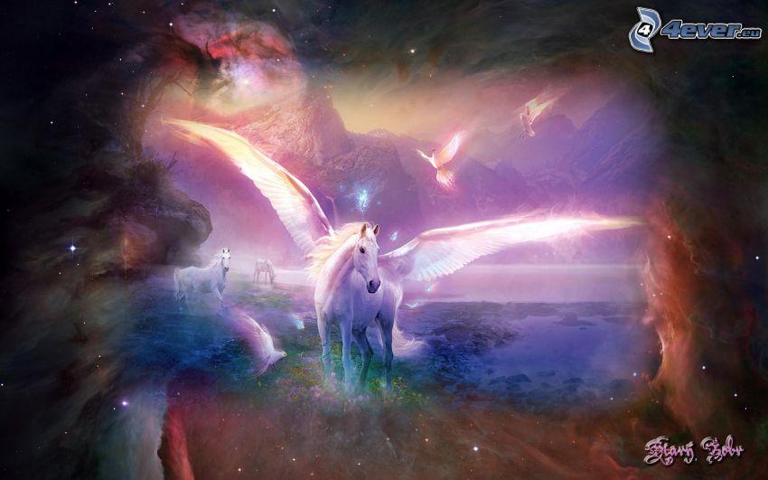 Pegasus, hav