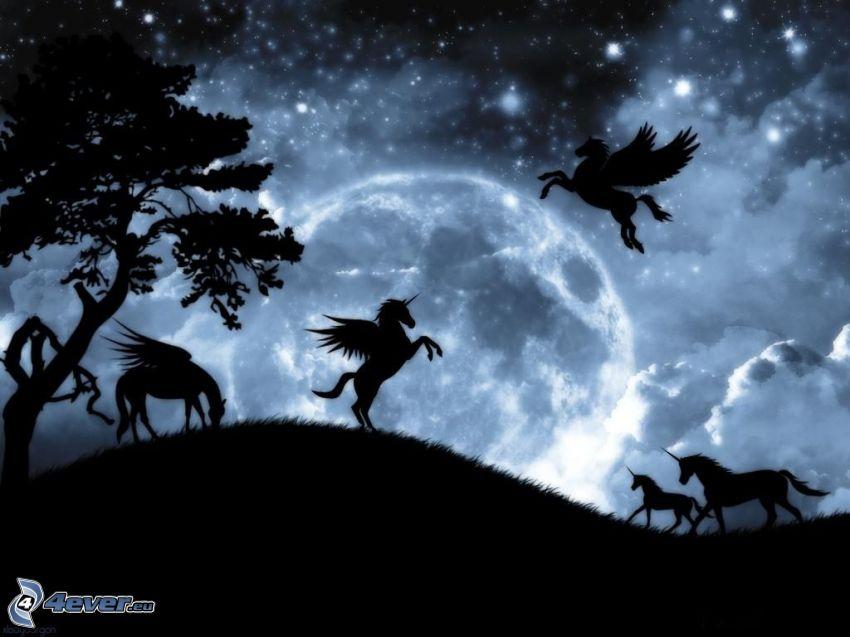 Pegasus, siluetter