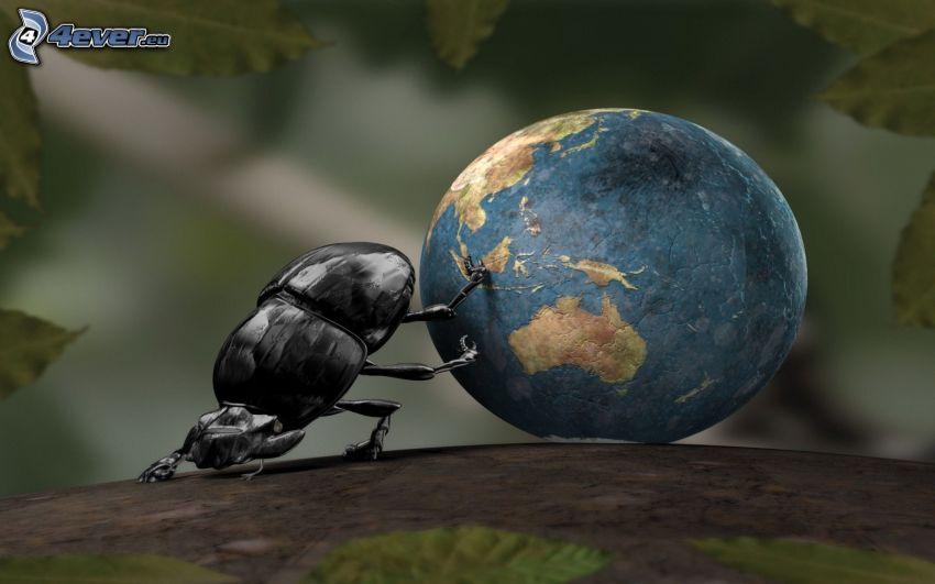 skalbagge, planeten Jorden, 3D