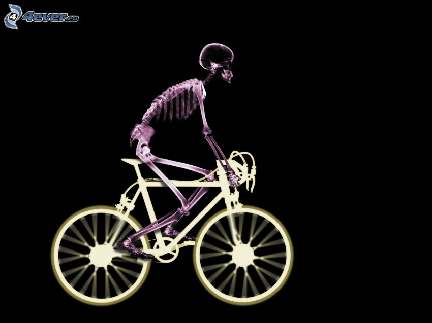 skelett, cykel