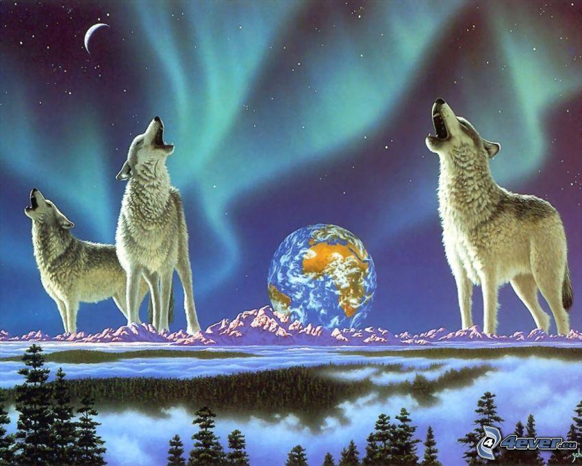 tecknad ylande varg, vargar, norrsken, Jorden, tecknat, konst