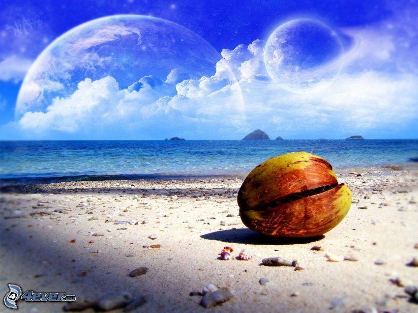 två månar, planet, strand, kokosnöt, himmel, hav, musslor