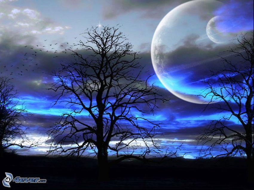 uttorkade träd, siluetter av träd, två månar