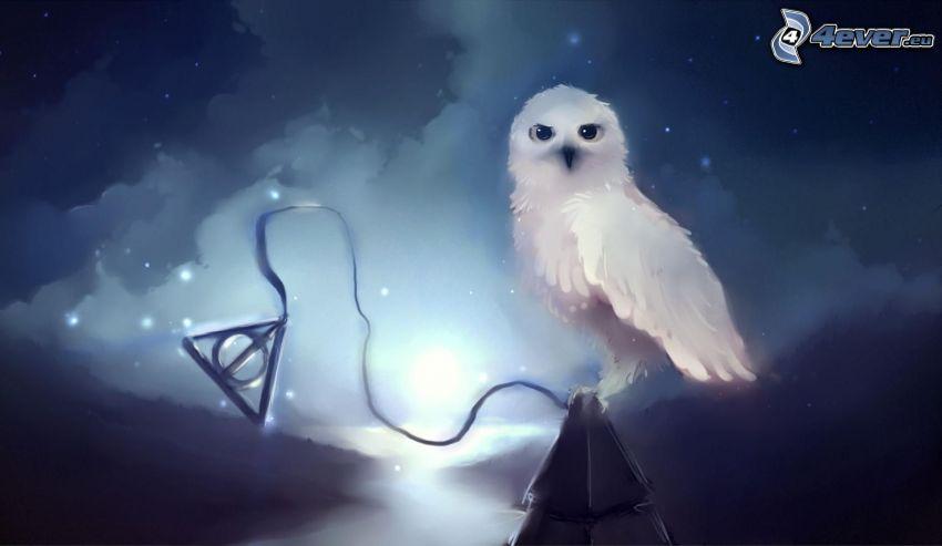 vit uggla, stjärnor, natt