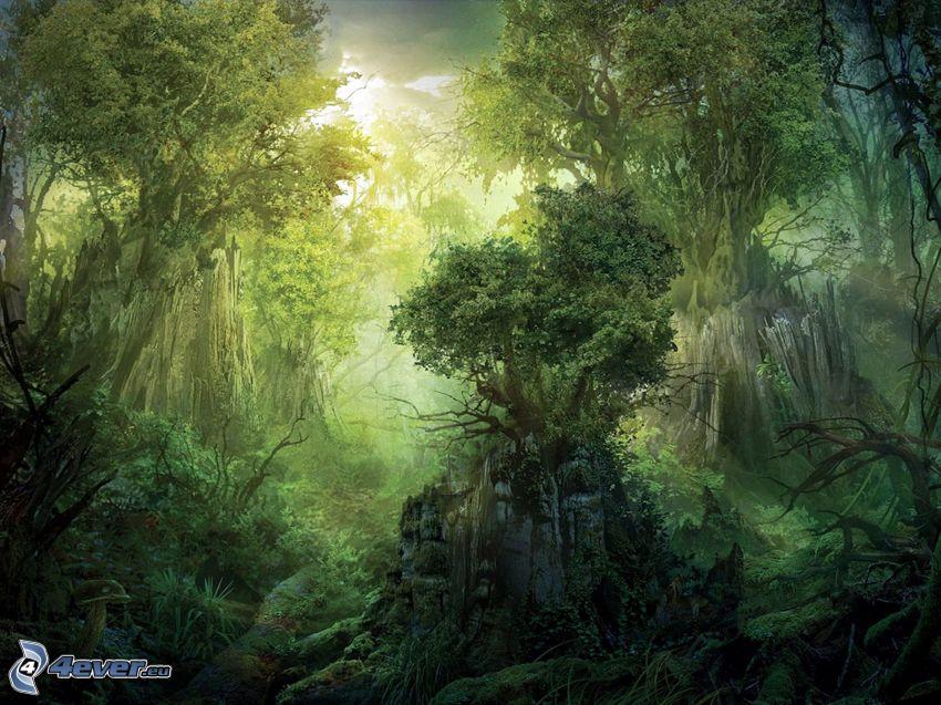 djungel, grönska