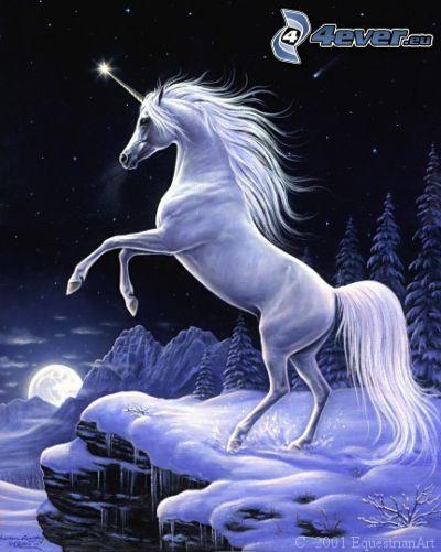 enhörning, skog, snö, måne, natt, stjärnor