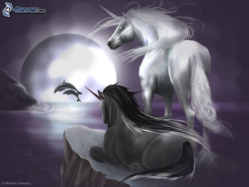 enhörningar, delfiner, måne