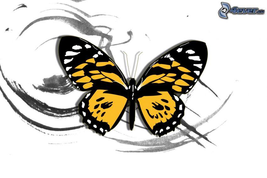 fjäril, linjer