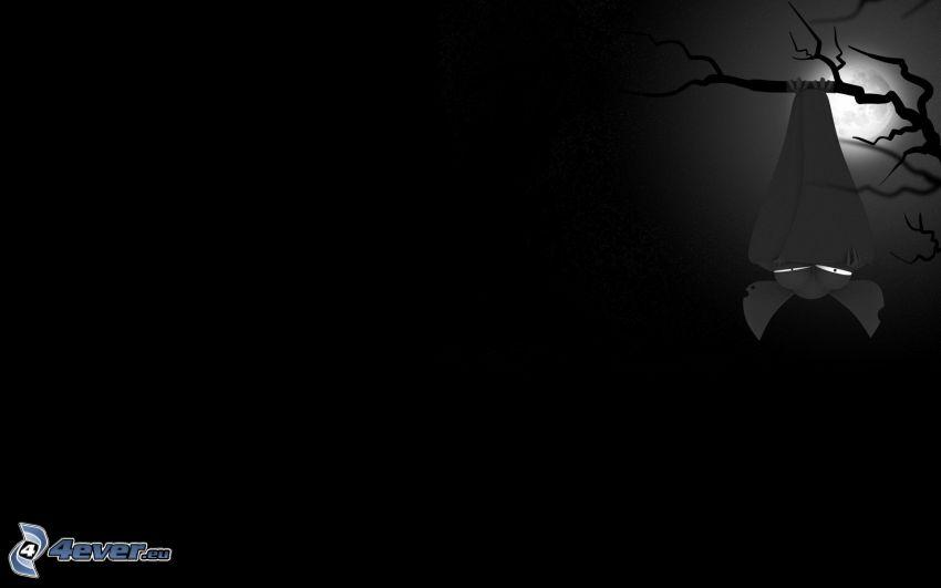 fladdermus, måne, grenar