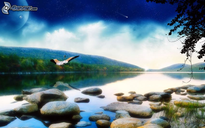 flod, bergskedja, stenar, stork, kvällshimmel
