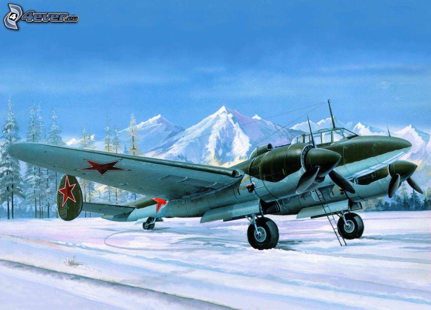 flygplan, snöigt landskap