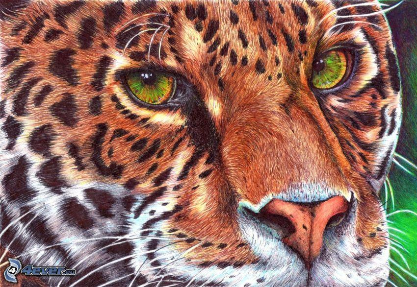 leopard, teckning