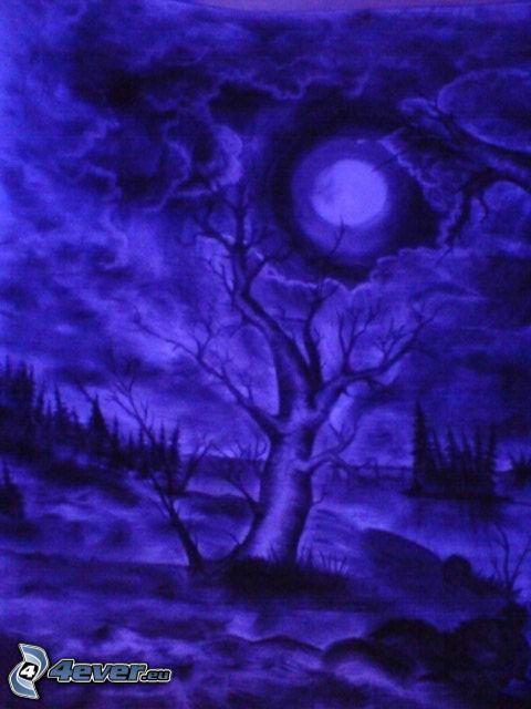 natt, måne, hemlighet