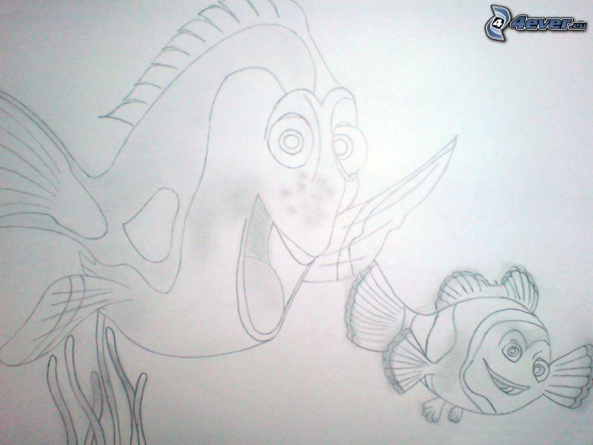 Nemo, teckning, bild