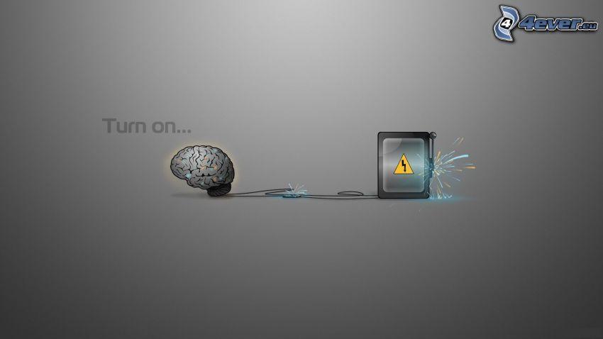 hjärna, farlighet