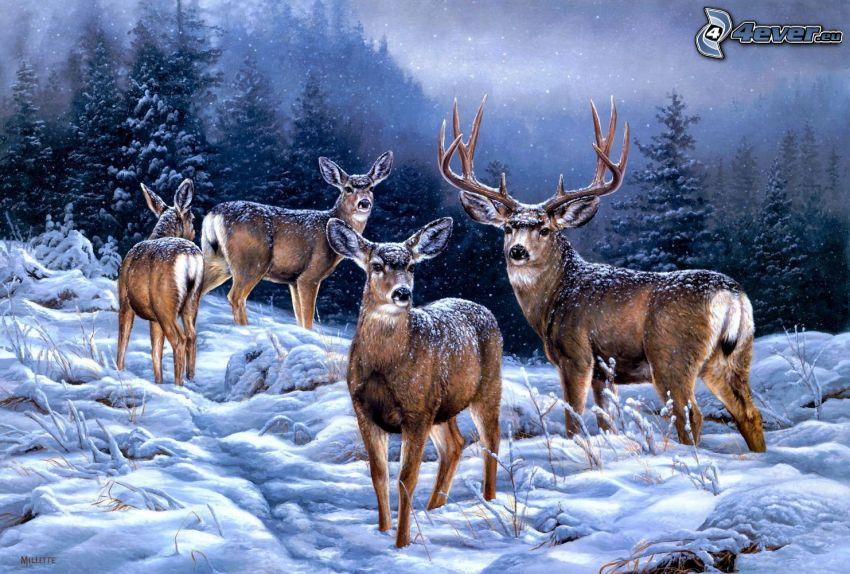 hjortar, snöigt landskap