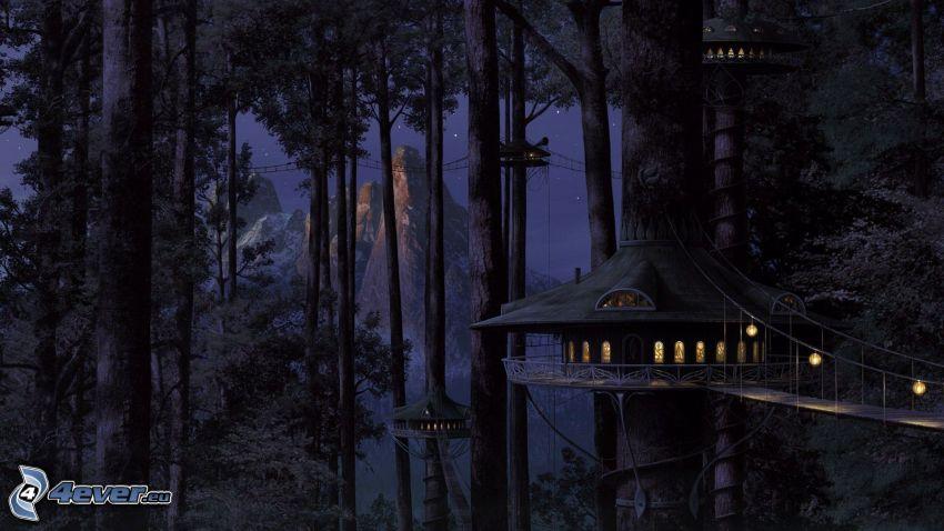 hus i träd, skog