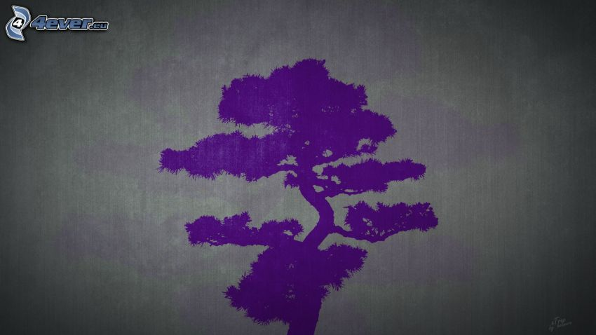 lila träd