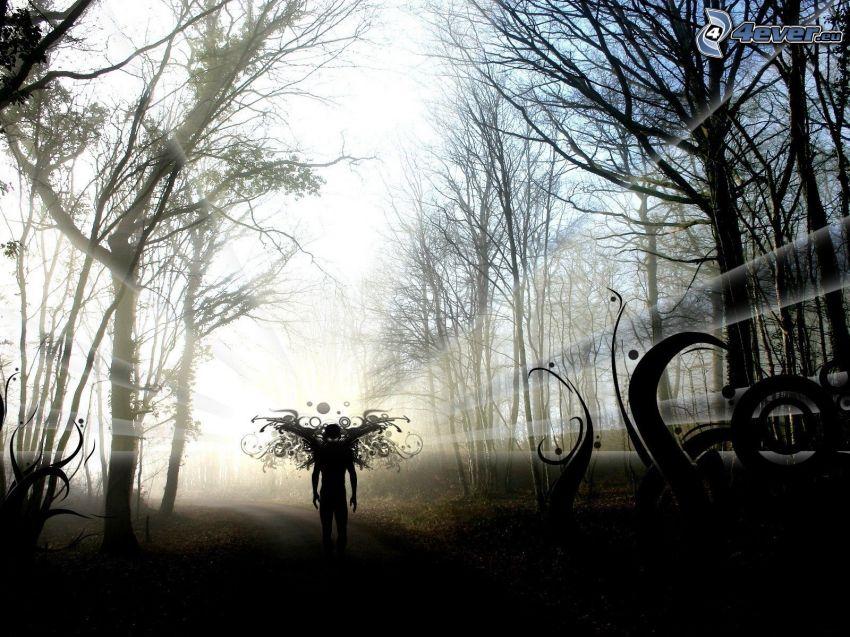 man, silhuett, abstrakt, trottoar, träd