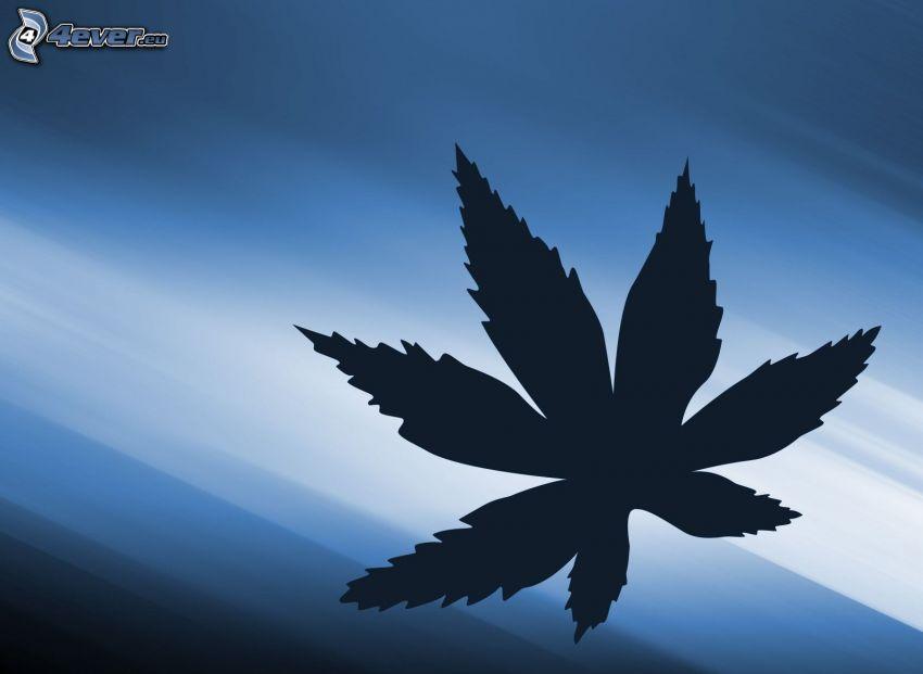 marijuana, blå bakgrund