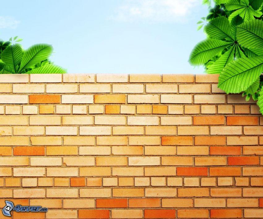 mur, tegelstenar, gröna blad