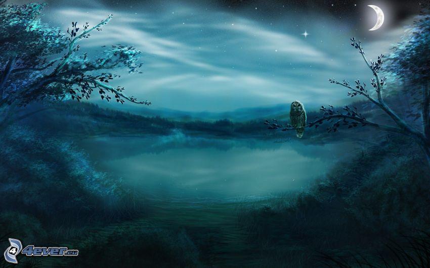 natt, tecknad uggla, måne, träd